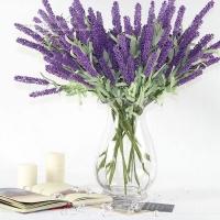 Loài cây, hoa vừa trang trí nội thất vừa đuổi muỗi hiệu quả