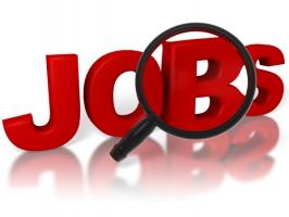 Kênh thông tin tuyển dụng uy tín nhất Việt Nam