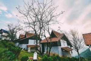 Khách sạn, resort cao cấp có view cực đẹp ở Sa Pa