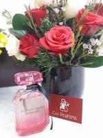Khám phá về shop nước hoa Cáo Perfume giữa lòng phố biển Nha Trang