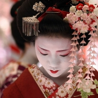 điều thú vị về nàng Geisha của Nhật Bản