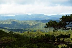 Khu dự trữ sinh quyển thế giới tại Việt Nam