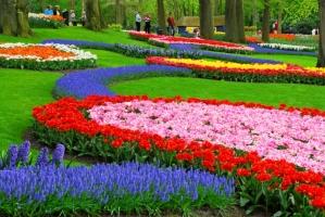 Khu vườn đẹp như truyện thần tiên