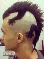 Kiểu tóc hài hước nhất thế giới