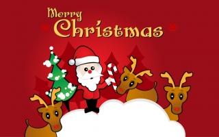 Cách trang trí cây thông Noel đẹp nhất trong đêm Giáng sinh