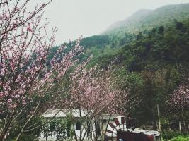 Kinh nghiệm khi đi du lịch Sapa