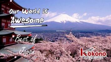 Trung tâm tiếng Nhật uy tín nhất ở Hải Dương