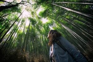 Kỹ năng sinh tồn khi bị lạc trong rừng