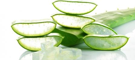Loại rau quả giúp trị mụn hiệu quả có thể bạn chưa biết