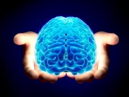Loại thực phẩm có hại cho não và trí thông minh của bạn