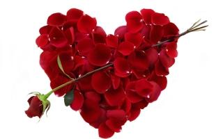 Lời chúc Valentine 14/2 hay và ý nghĩa nhất