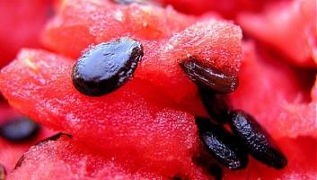Lợi ích có thể bạn chưa biết của hạt dưa hấu