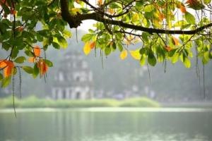 Lý do để yêu mùa thu Hà Nội