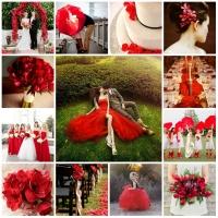 Màu sắc đám cưới theo cung hoàng đạo