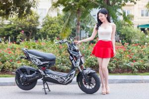 Mẫu xe máy điện tốt nhất Việt Nam 2018