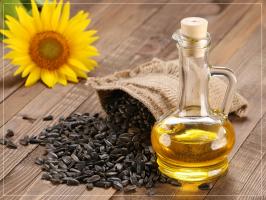 Máy ép dầu thực vật tại nhà hiệu quả và chất lượng nhất hiện nay