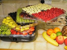 Máy sấy thực phẩm dùng cho gia đình tốt nhất hiện nay