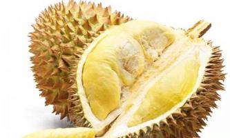Món ăn làm từ sầu riêng và cách làm đơn giản