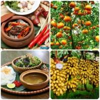 Món đặc sản ngon và nổi tiếng nhất của Hà Nam