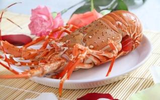 Món ngon giá cực đắt đỏ dành cho nhà giàu Việt