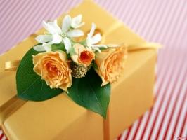 Món quà ý nghĩa nhất nên tặng các thầy cô vào ngày 20 tháng 11