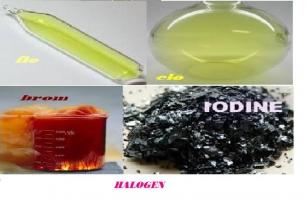 điều thú vị về nhóm Halogen trong hóa học có thể bạn muốn biết