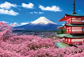 Nét độc đáo trong văn hóa người Nhật