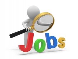 Ngành nghề có nhu cầu nhân lực nhiều nhất ở Việt Nam trong tương lai