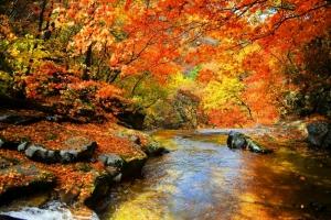 Ngọn núi đẹp nhất Hàn Quốc vào mùa thu đông