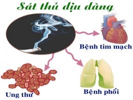 Cách giải độc nicotine trong thuốc lá hiệu quả nhất