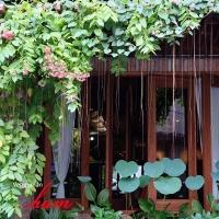 Nhà hàng chay được yêu thích nhất tại Sài Gòn