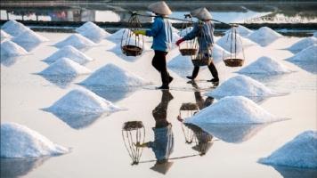 Cánh đồng muối đẹp nhất Việt Nam