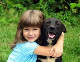 Chú cún đáng yêu nên nuôi khi nhà có trẻ con