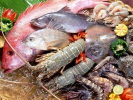 địa chỉ bán hải sản ngon, rẻ ở TP. HCM