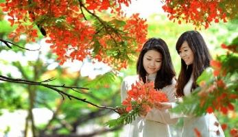 Phim Trung Quốc về thời học sinh hồn nhiên, mơ mộng không thể bỏ lỡ