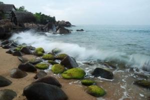 Lí do nên đến rạn Nam Ô thành phố Đà Nẵng