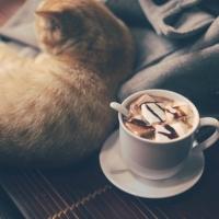 Quán cà phê phong cách nhất tại Thái Nguyên
