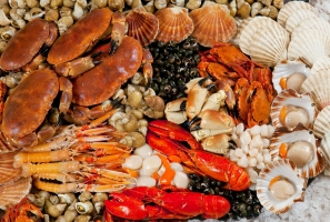 Quán hải sản tươi sống ngon và rẻ nhất Cần Thơ