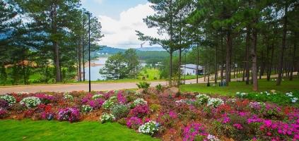 Resort sở hữu không gian cực lãng mạn ở Đà Lạt