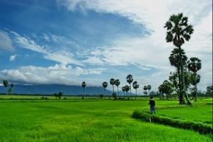 địa điểm hấp dẫn du khách của vùng đất An Giang