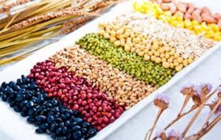 Sản phẩm ngũ cốc tăng cân hiệu quả nhất hiện nay