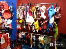 Shop bán phụ kiện thú cưng uy tín và chất lượng ở Đà Nẵng