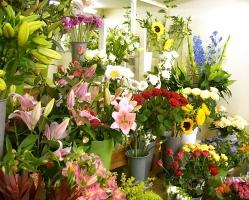 Shop hoa tươi ở Huế được yêu thích nhất