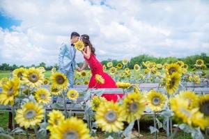 Studio chụp ảnh cưới đẹp nhất tại TP Nha Trang