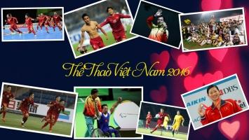 Sự kiện thể thao Việt Nam tiêu biểu nhất năm 2016
