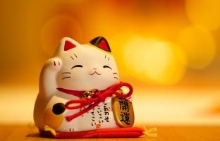 Sự thật thú vị về mèo thần tài Nhật Bản (Maneki Neko)