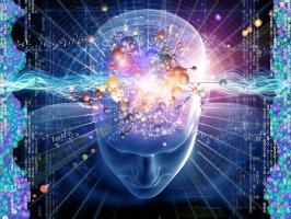Sự thật về bộ não của con người có thể bạn chưa biết