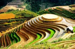 Địa điểm du lịch hấp dẫn du khách nhất tại Việt Nam năm 2017