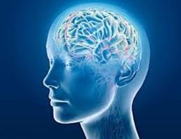 Thói quen ảnh hưởng xấu đến sức khỏe bộ não