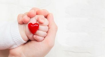 Thực phẩm mẹ bầu nên sử dụng thường xuyên trong quá trình mang thai